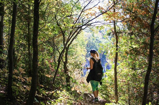 lyme-disease-prescott-az-adventure-forest